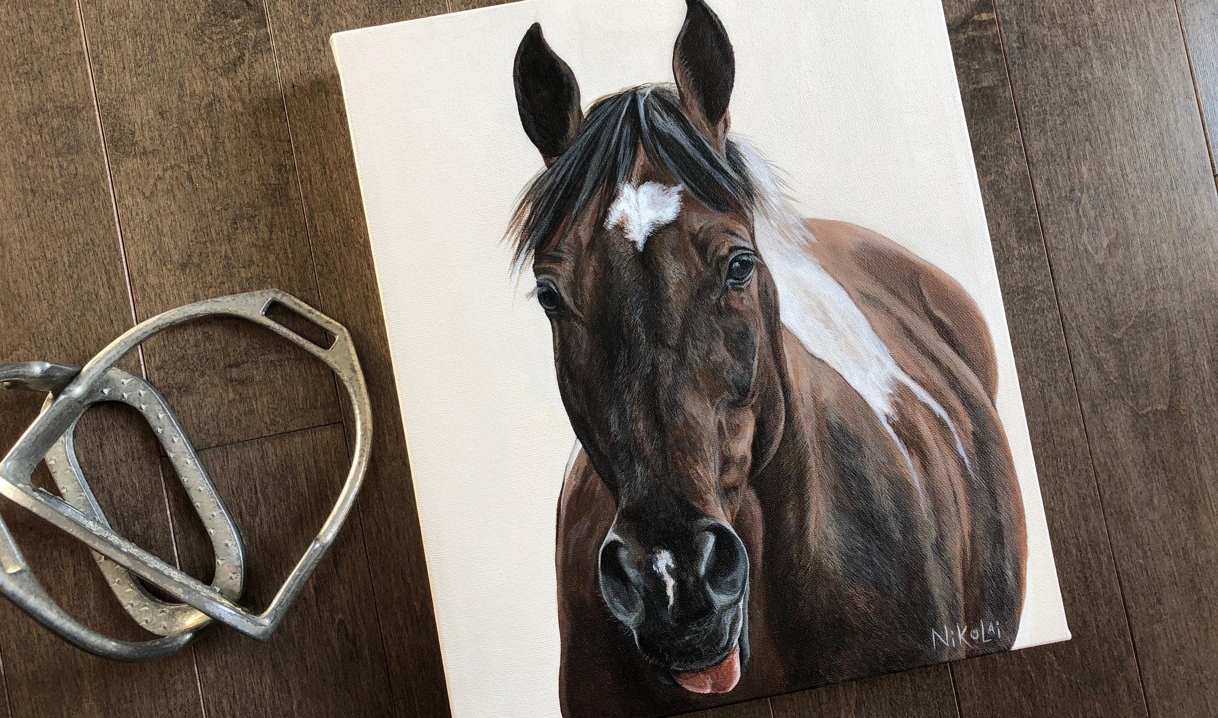 Rookie (Paint Horse)