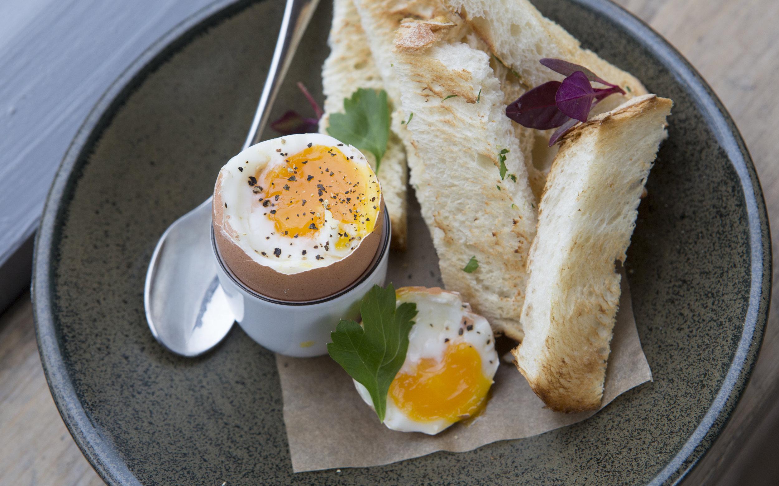 eggandsoldiers