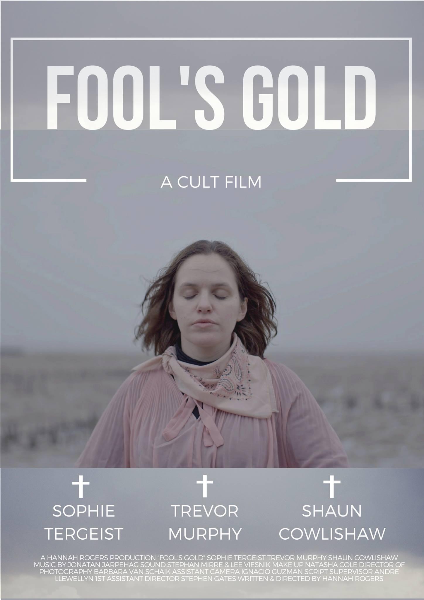 Fool's Gold poster.jpg