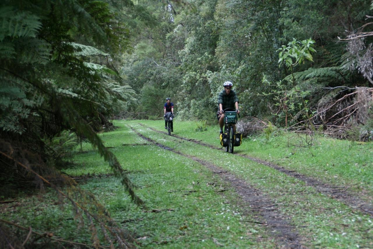 O'shannassy aqueduct trail bikepacking