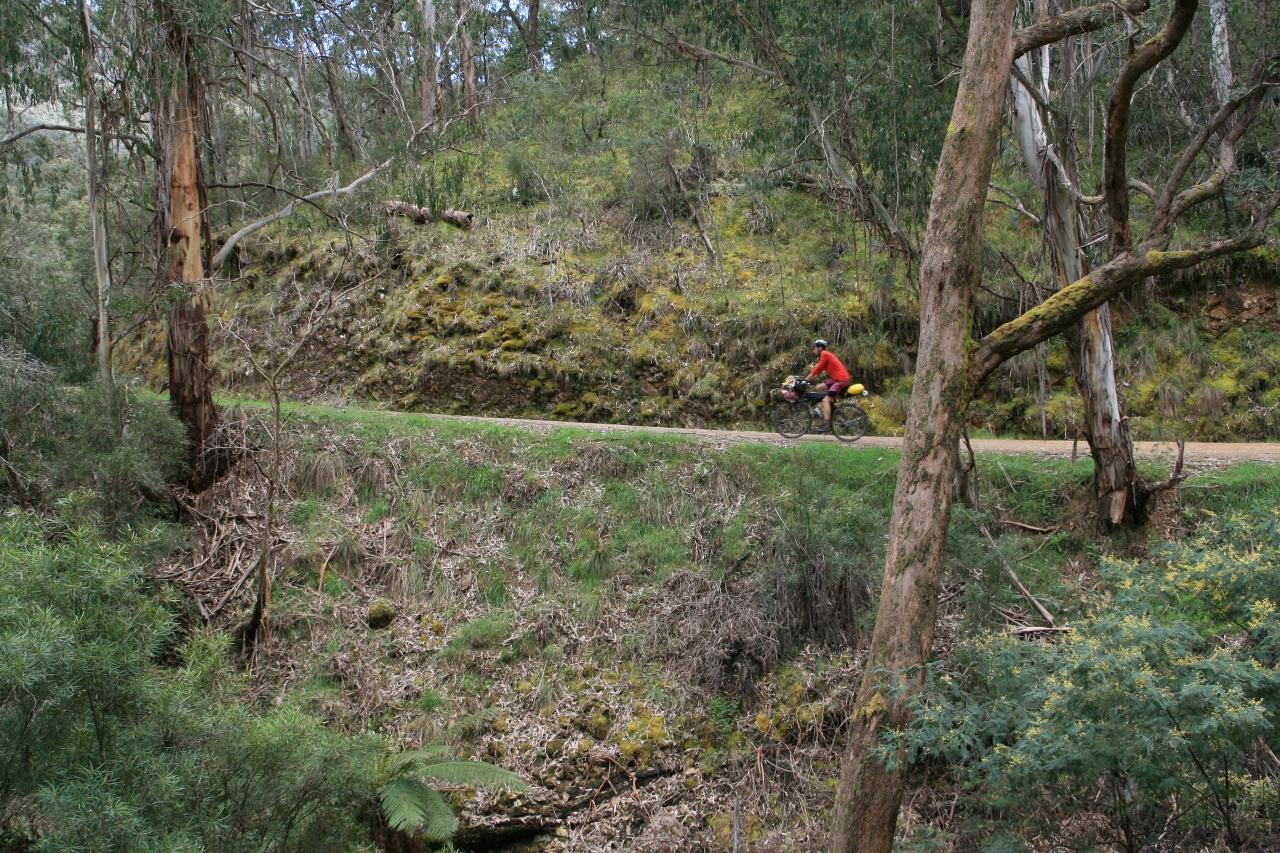 big river road yarra ranges bike