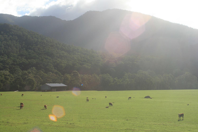 buckland valley bikepacking