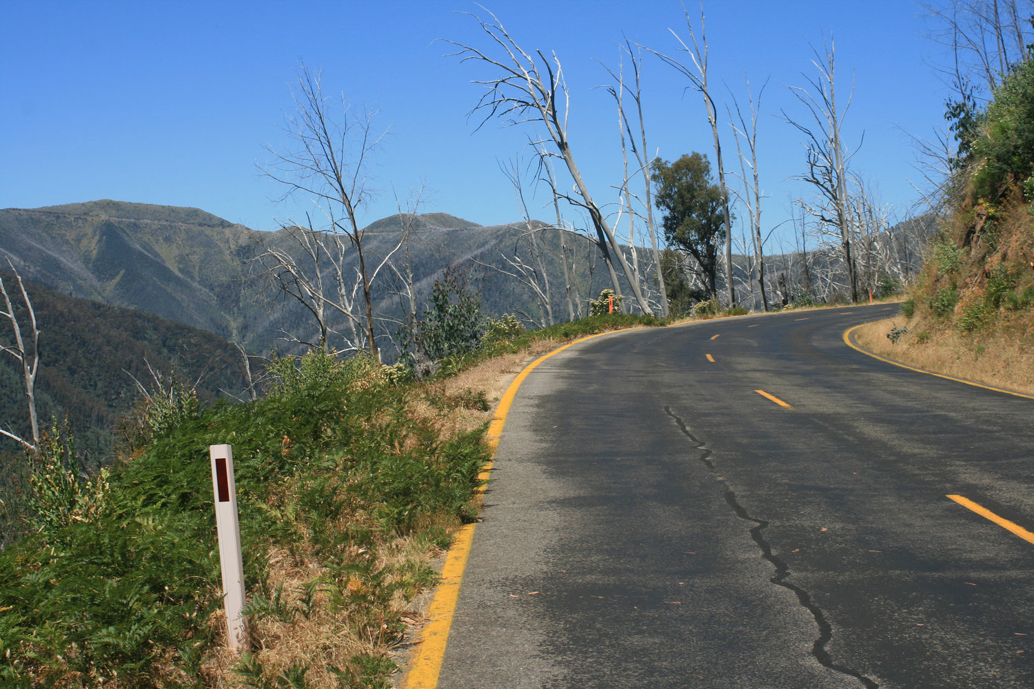 great alpine road hotham climb cycle touring