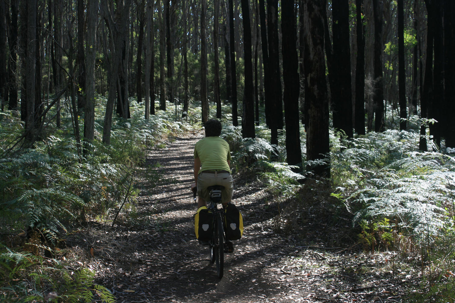 old beechy rail trail cycle touring