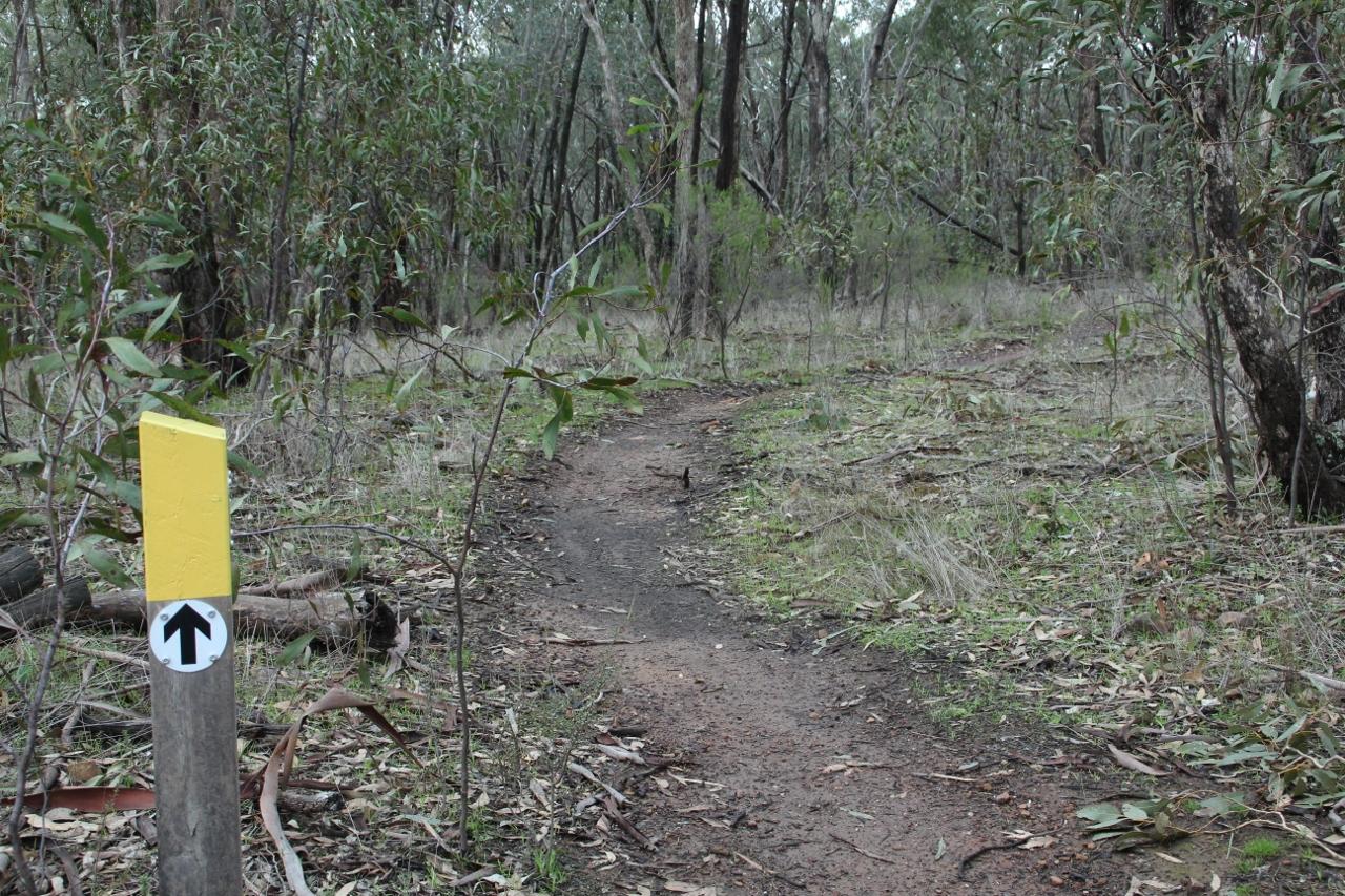 goldfields track signage mountain bike