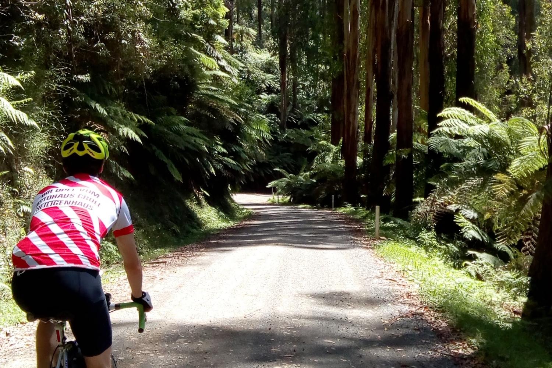Acheron way yarra ranges cycling