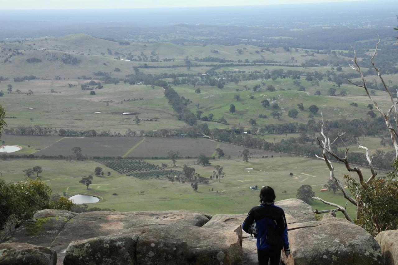 Mount Alexander lookout