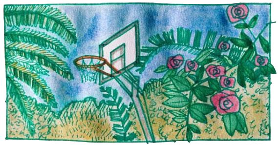 basket_.png