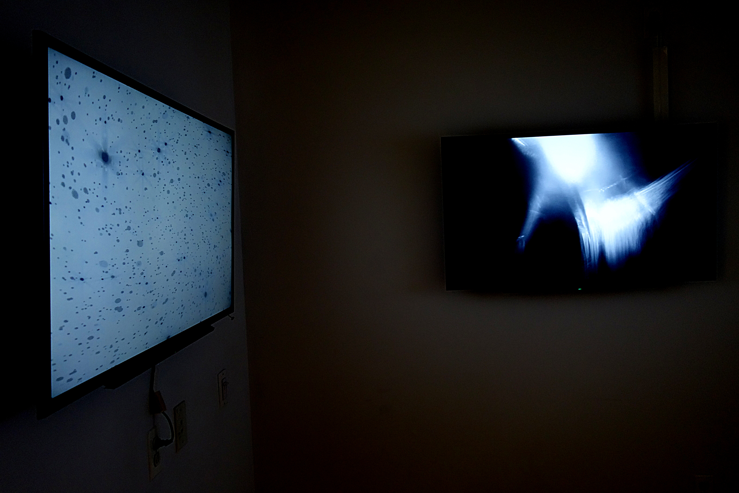 DANIEL LOPERA In Utero, Being Life, Doing Death, Next State?, 2015 HD Video Projections 3 Monitors Courtesy of the Artist