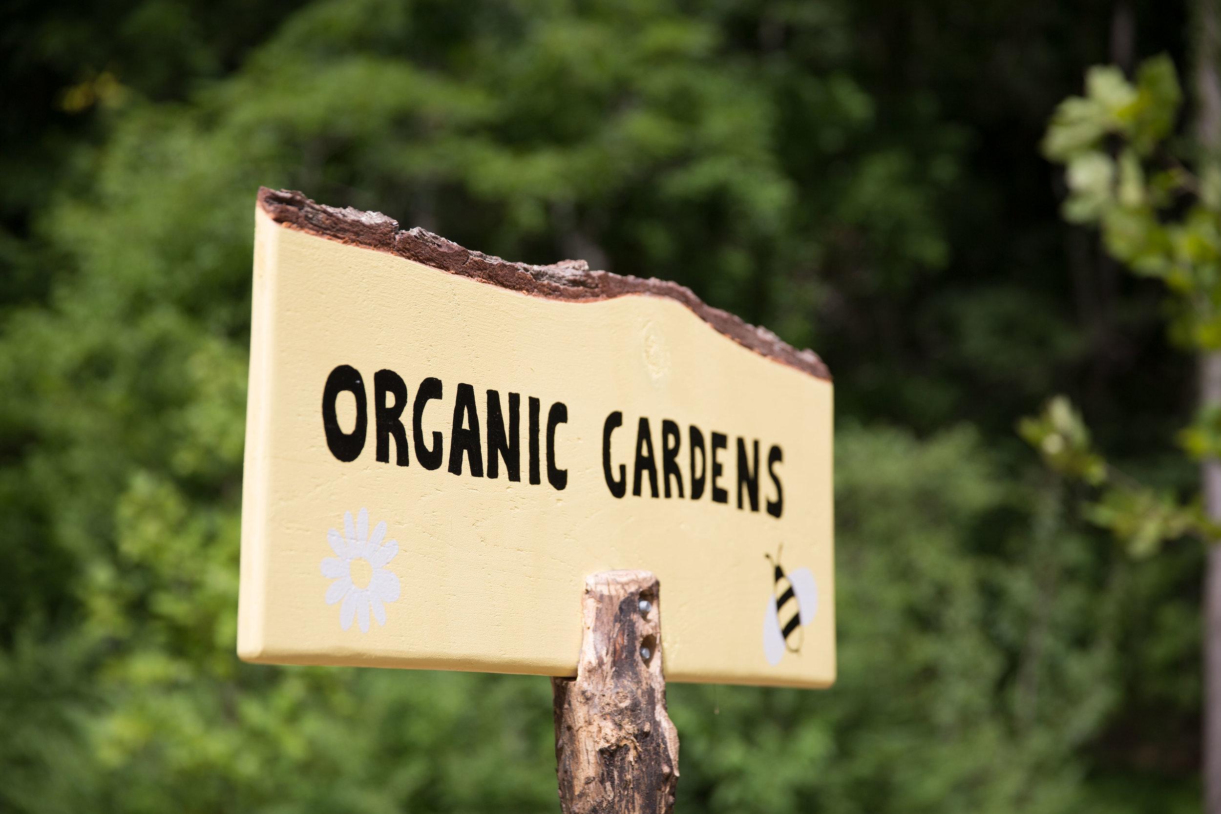Organic Community Garden.jpg