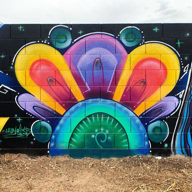Check out this beautiful piece by @ladyrise that she created during the 2019 Oak Street Alley Mural Festival. Stop by and check it out! . #ladyrise #muralsofphoenix #phoenixmurals #phxmurals #azmurals #mural #murals #phoenix #phx #dtphx #az #arizona #art #arte #urbanart #publicart #streetart #phxart #phoenixart #artist #wallart #azculture #culture #graff #graffiti #nativeamericanart