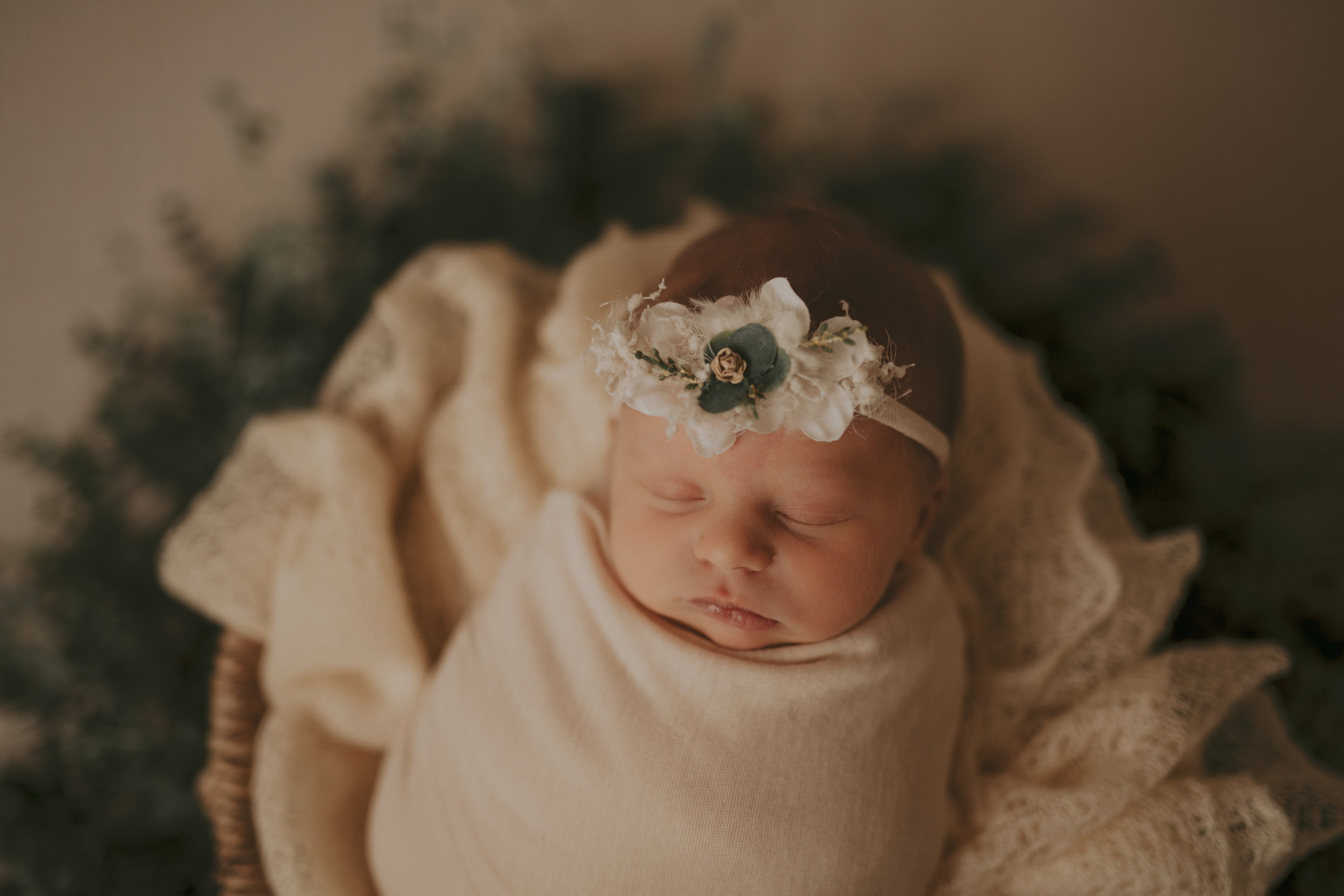 Cochrane Newborn Photographer_.jpg