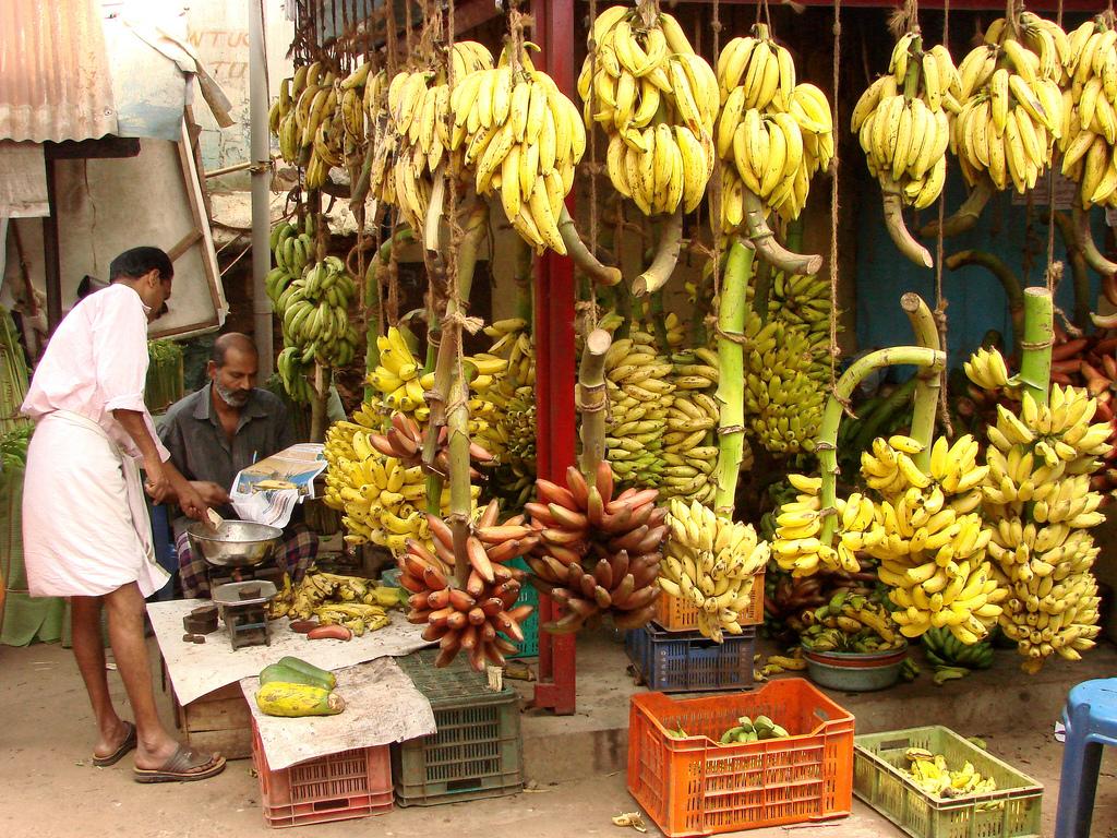 Bananas for sale in Kerala, India. Image by  Adam Jones via Flickr