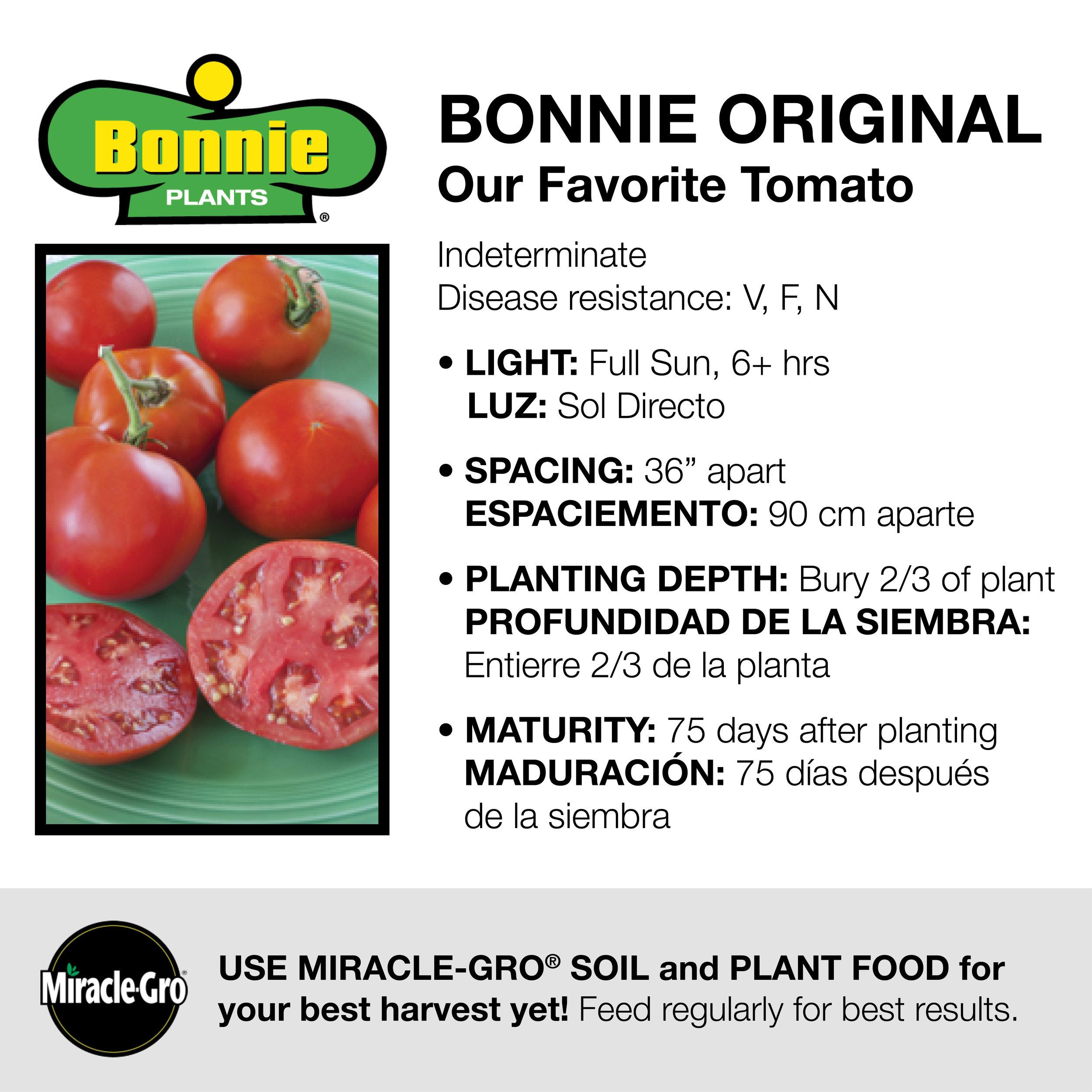 Image via Bonnie Plants and Walmart.com