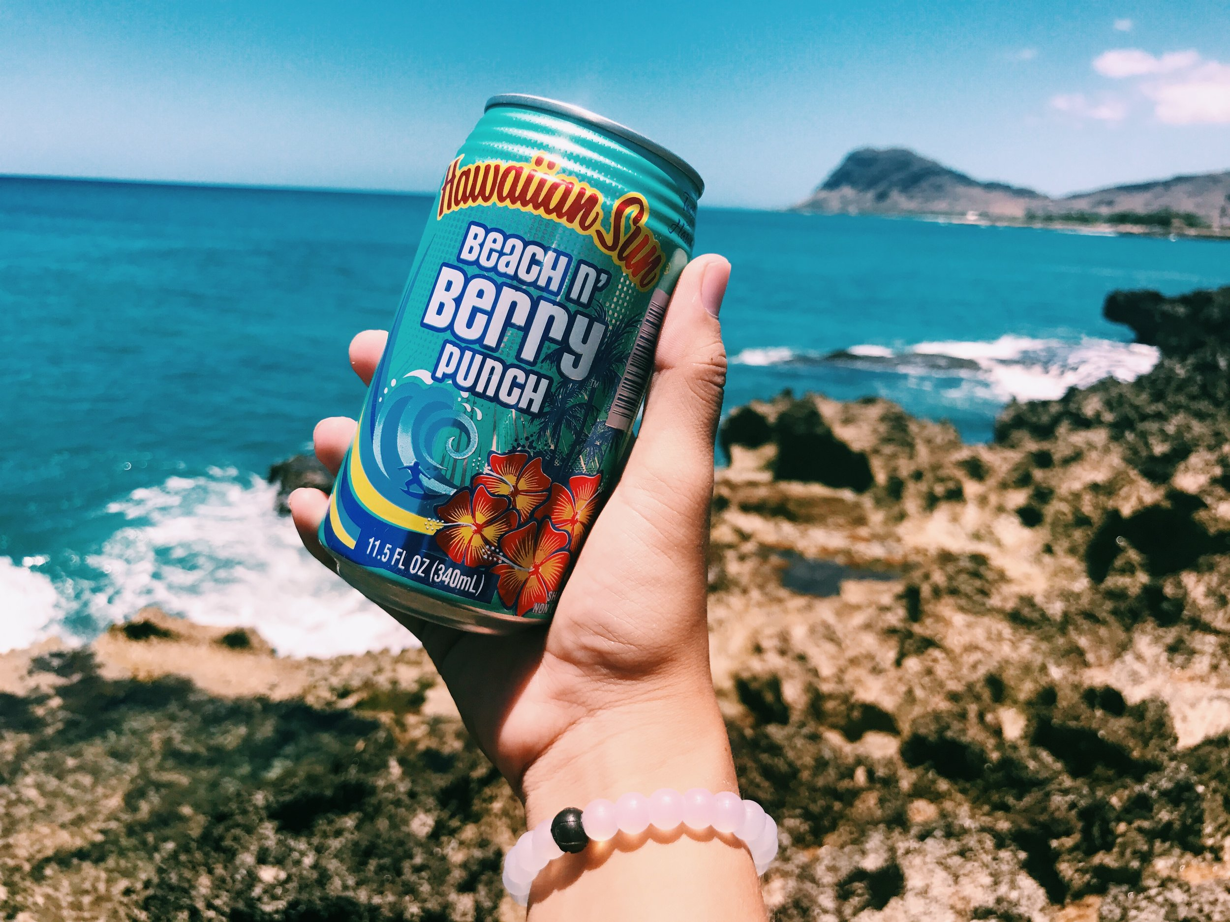 BeachNBerry