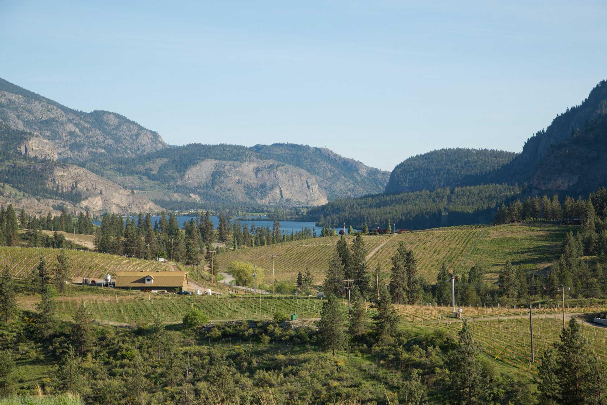 Liquidity-Winery-Okanagan-2.jpg