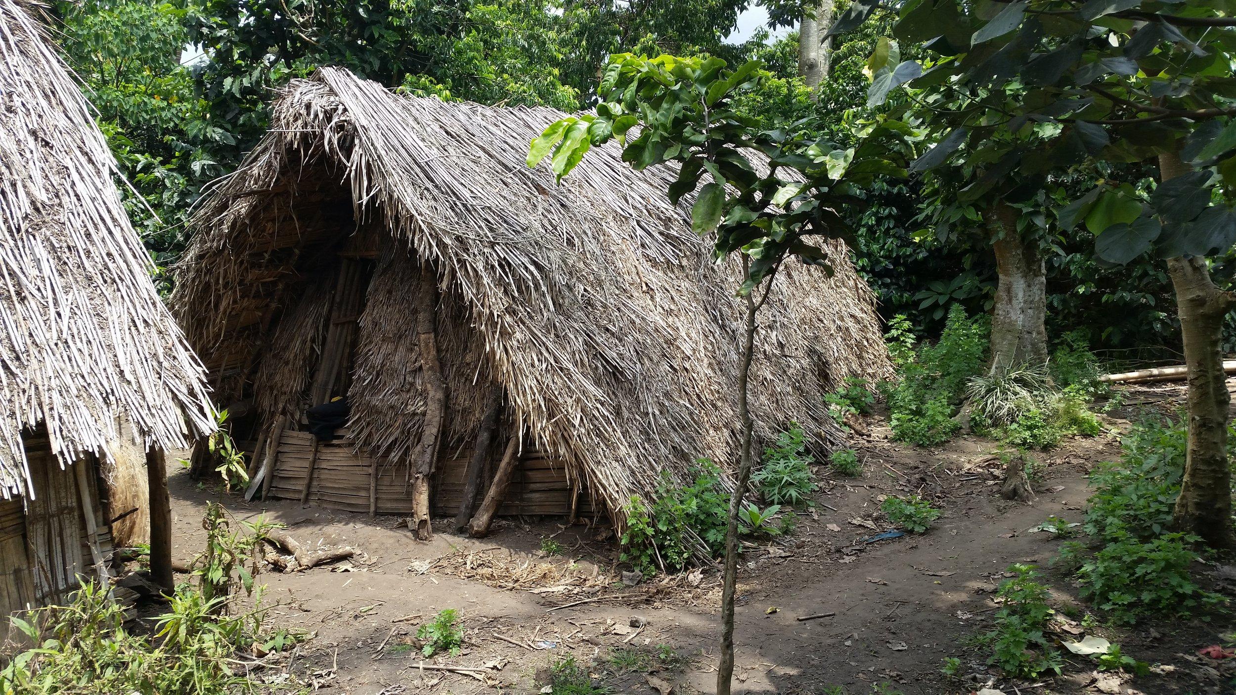 Yakel organic cyclone hut