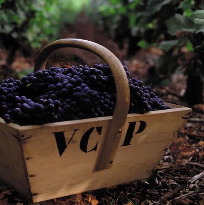 Champange - Maison-de-Champagne-Veuve-Clicquot-Ponsardin---square.jpg