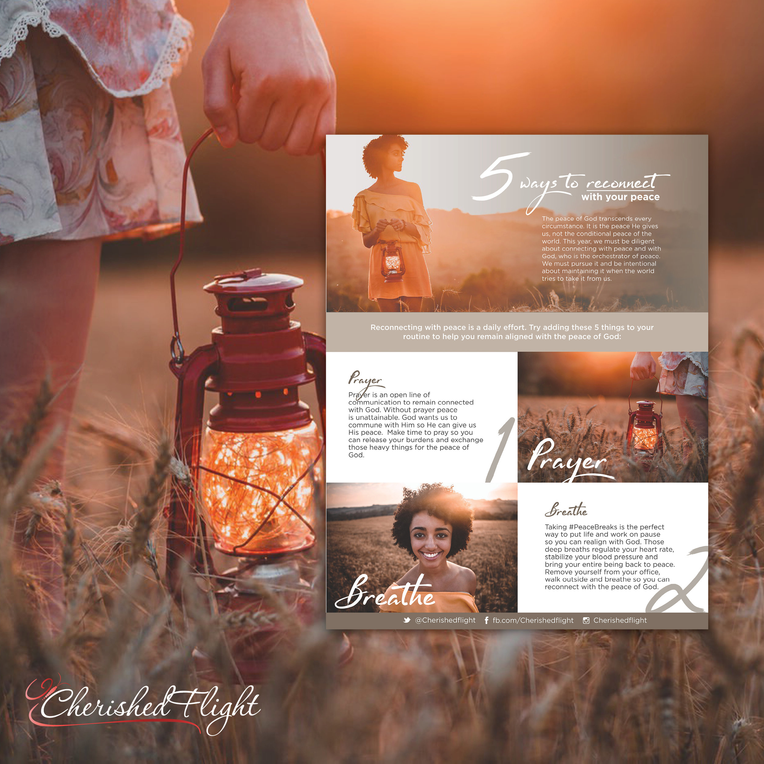 CherishedFlight_SM.jpg