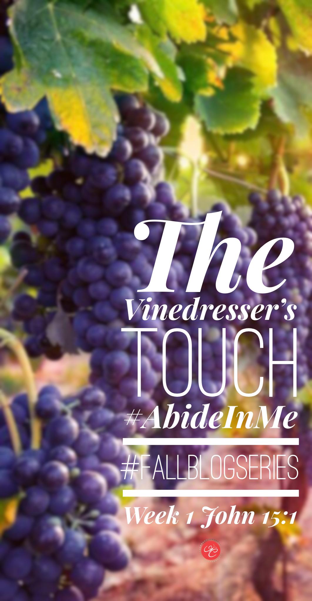 The Vinedresser's Touch: John 15:1