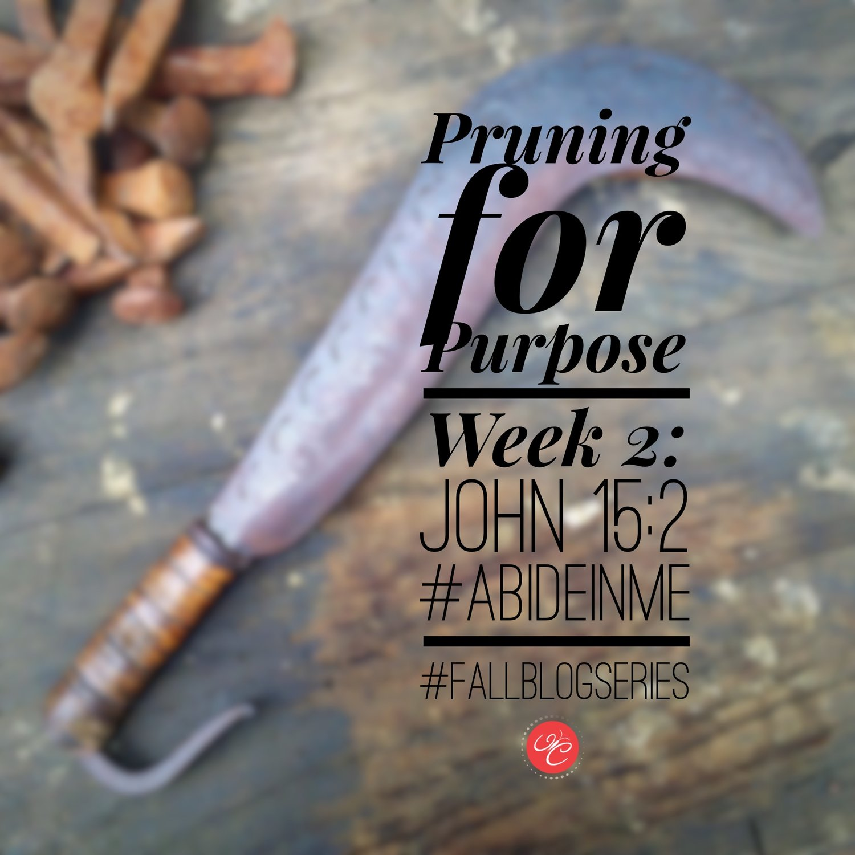Pruning for a Purpose: John 15:2