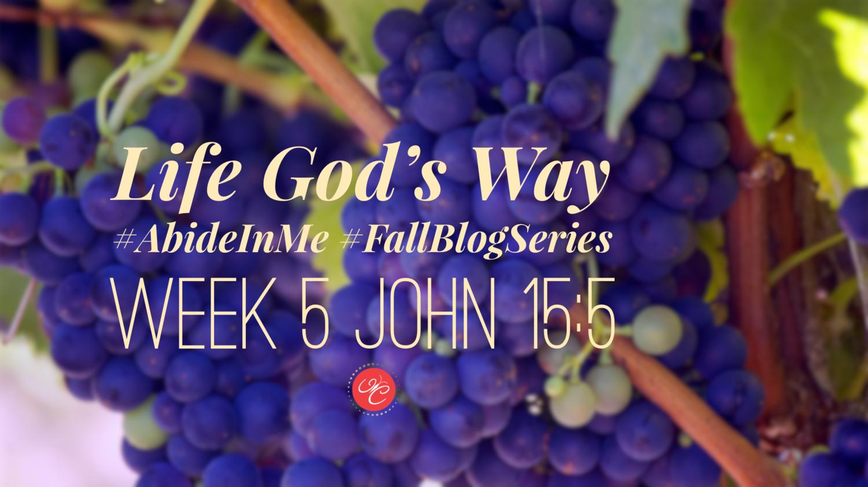 Life God's Way: John 15:5