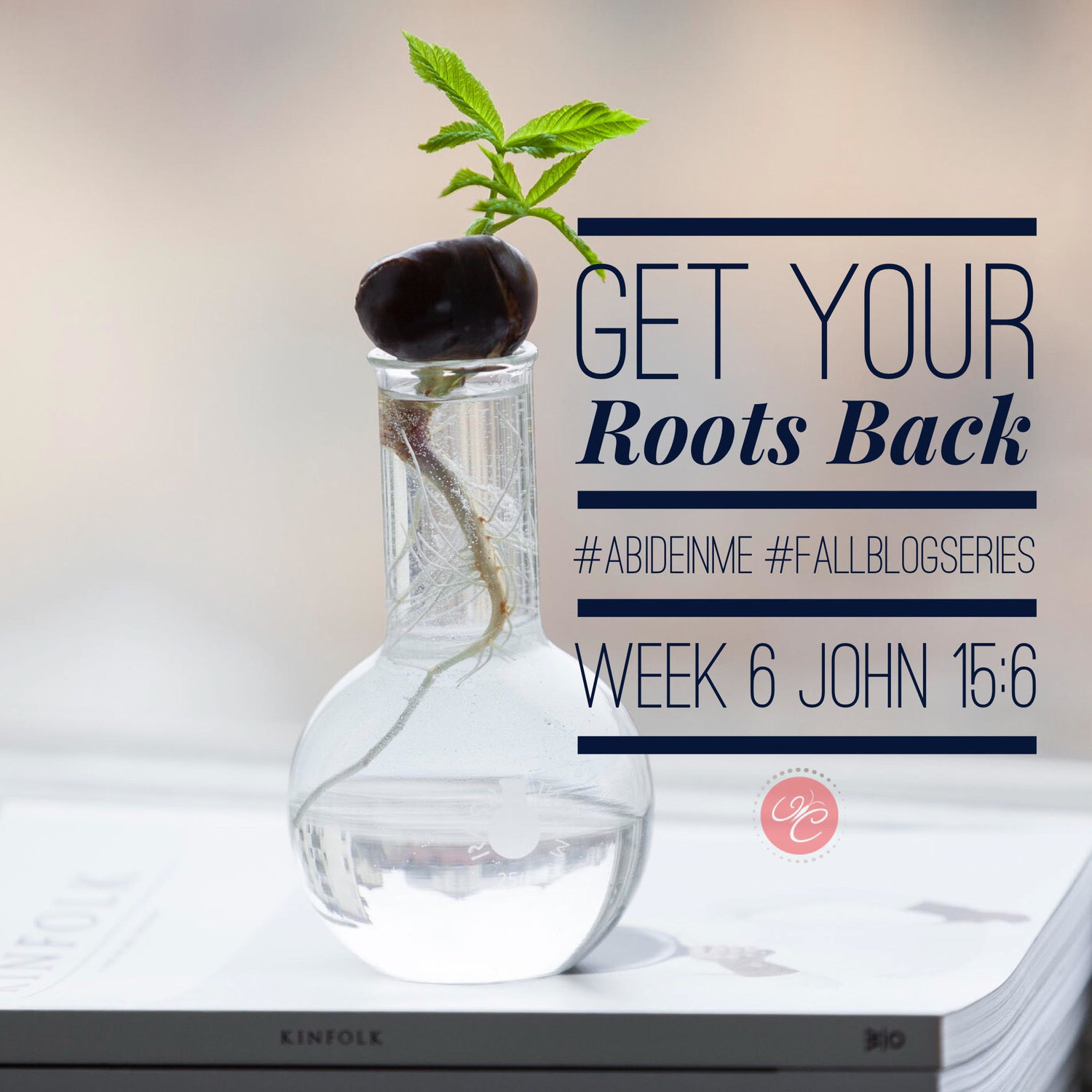 Get Your Roots Back: John 15:6