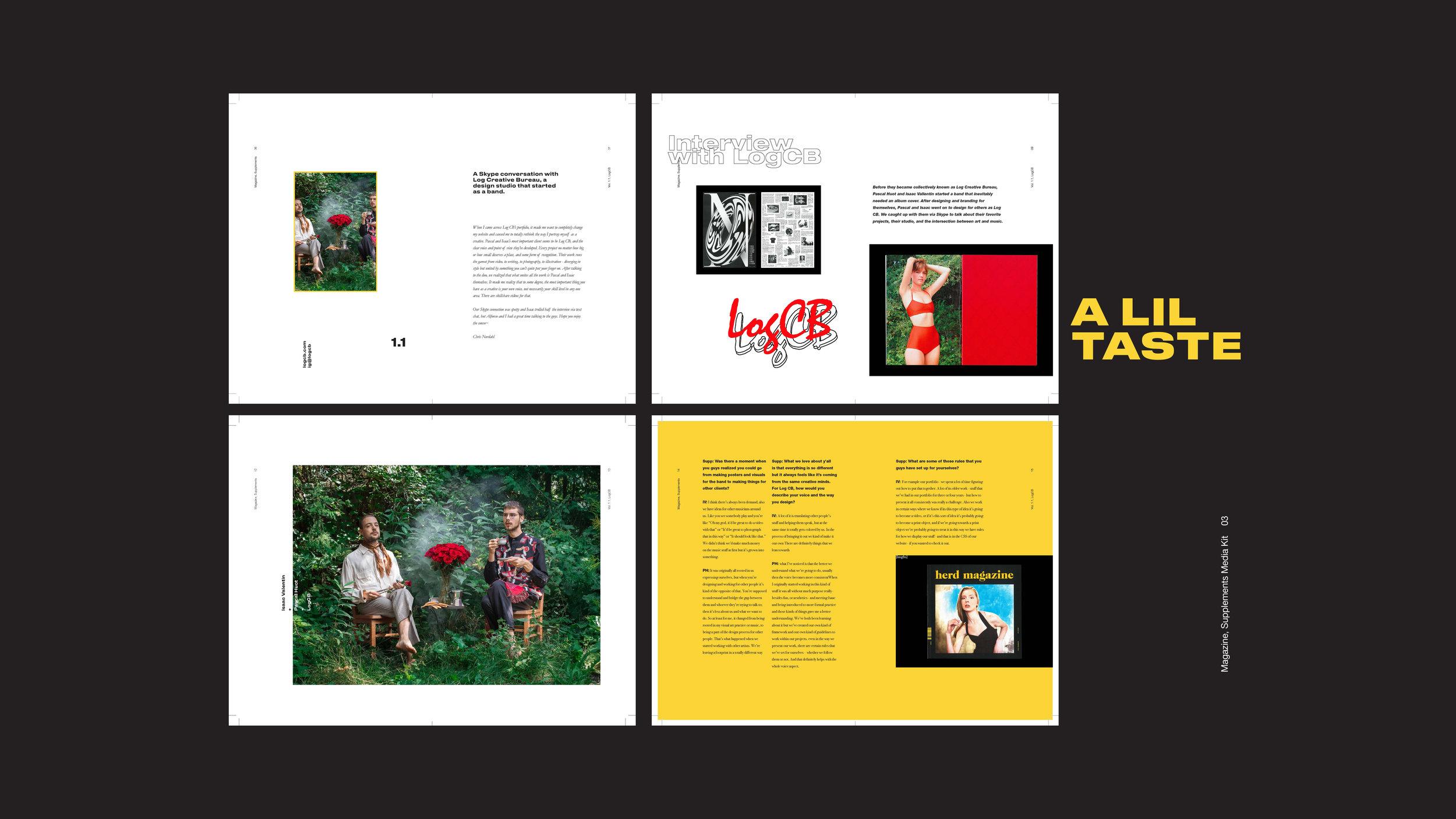 Supplements Media Kit3.jpg