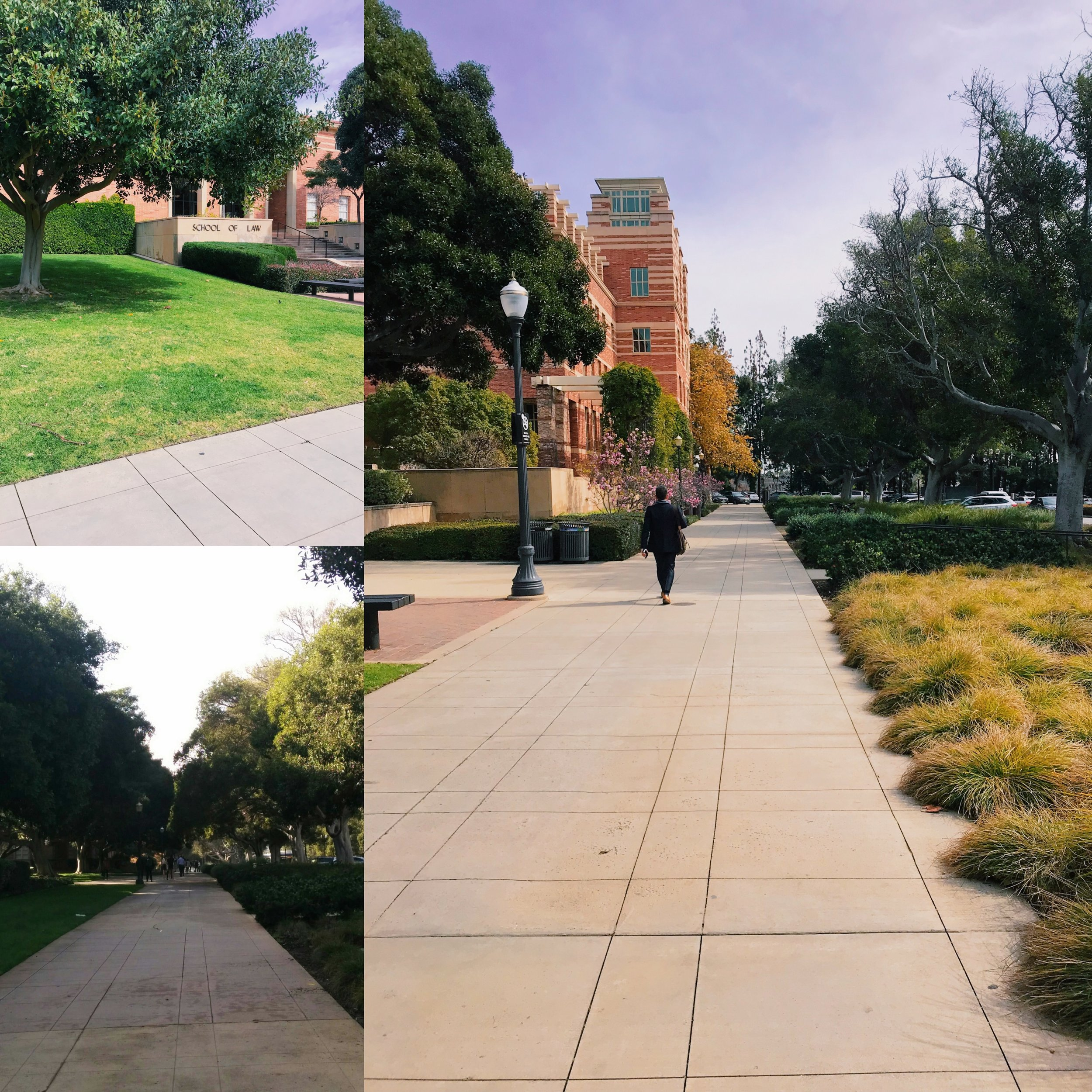 Walkway near the Law School