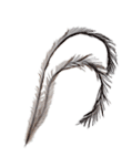 An emu feather is a double feather.