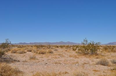 Mojave Desert, USA - desert biome ©kidcyber