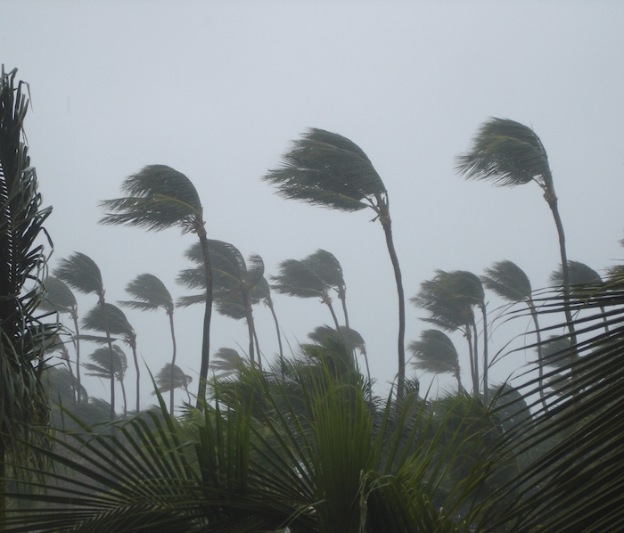 Cyclones bring high winds and heavy rain. ©iStock