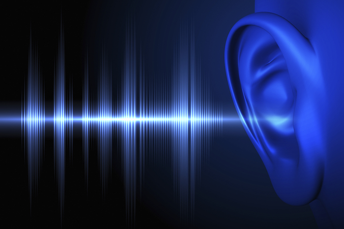 Sound waves enter the ear and the brain tells us what we are hearing. ©iStock Images
