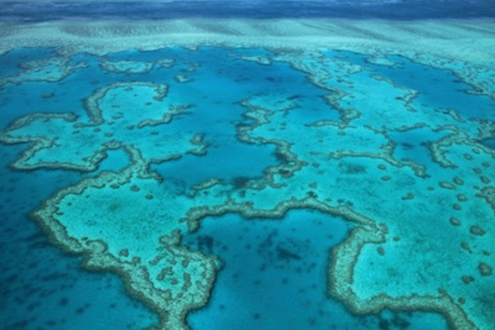Part of the Great Barrier Reef seen from the air. ©Getty Images