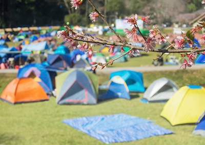 A campsite in the summer holidays©Getty Images