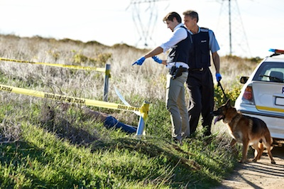 Police use dogs to help in some emergencies. Getty Images