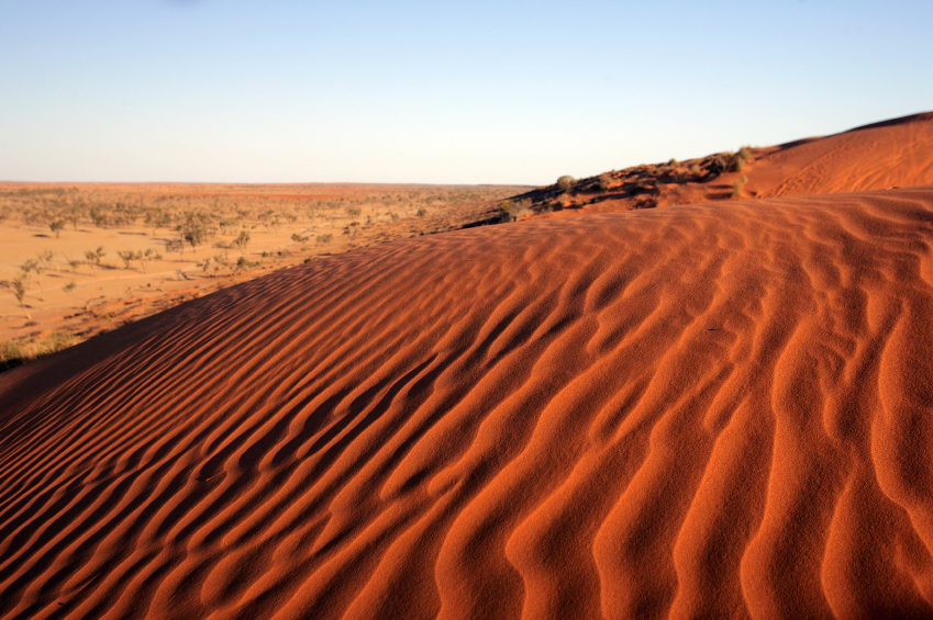 Large sand dunes are a feature of the Simpson Desert©iStock