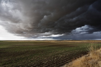 Cumulonimbus clouds bring rain. iStock