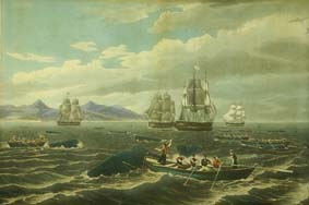 Before steamships, whalers hunted in rowboats and used harpoons. ©Getty Images