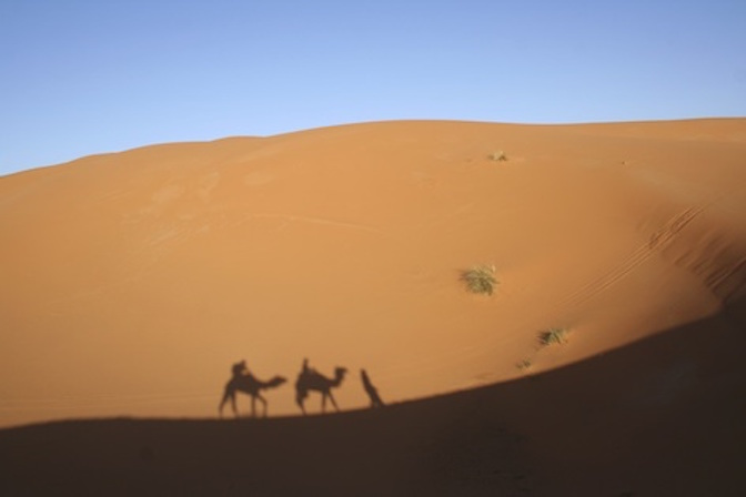 Shadows of camels crossing a desert sand dune. Camels are called 'ships of the desert' because they carry heavy loads, travelling where vehicles can't. Getty Images