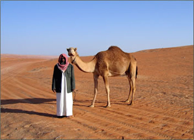 A dromedary's natural habitat is the sandy deserts of the Middle East. Getty Images