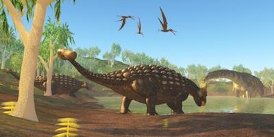 dino_ankylosaurus_TS.jpg