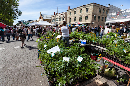 Salamanca markets on a Saturday in Hobart, is a popular place with tourists and sightseers. © iStock