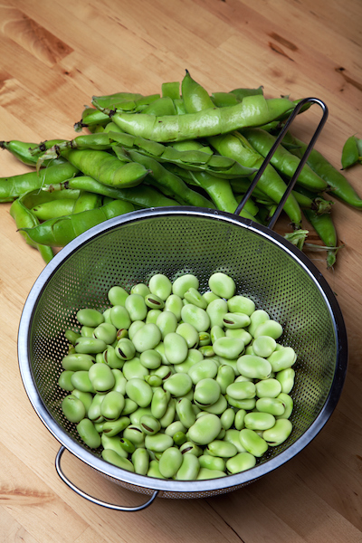 broadbeans_shelled_IS.jpg