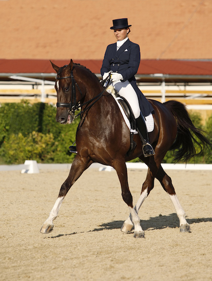 In dressage, the horse and rider must move sideways ©iStock
