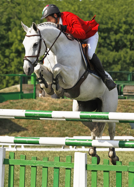 Riders make their horses jump over sets of rails in jumping events. ©iStock