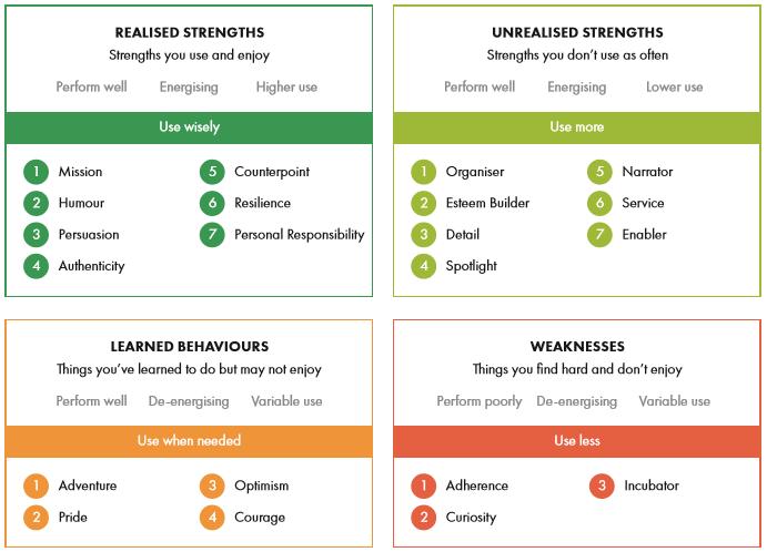 r2 strengths profiler, strengths assessment, play to your strengths, realise2 strength assessment, 4m model