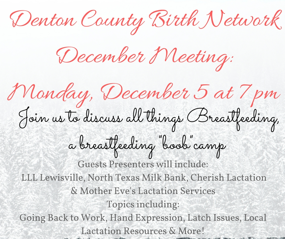 denton_county_birth_network_december_meeting