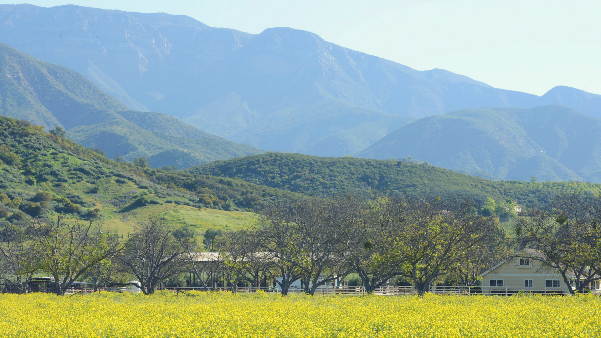 2018 Grant Recipients   OWF awards grants to 13 organizations in the Ojai Valley   View Grantees