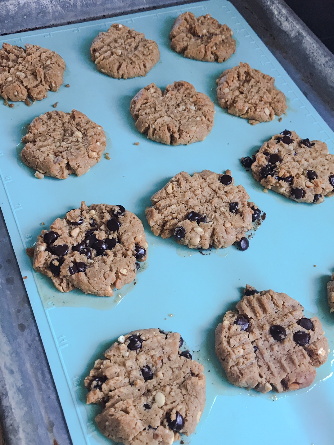 Cookies cooling on the cookie sheet.